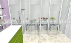 Визуализация магазина цветов 2 АРОМАТНЫЙ МИР Картинка 5