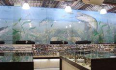Торговое оборудование для рыбалки Рыбомания РОНДО