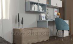Мебель для рабочего места школьника Вид 1