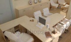 Мебель в кабинет директора Вид 2