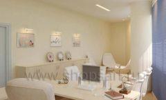 Мебель в кабинет директора Вид 3