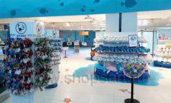 Торговое оборудование 3 детского сувенирного магазина Москвариум ВДНХ ЦВЕТНЫЕ МЕТАЛЛИЧЕСКИЕ СТЕЛЛАЖИ Фото 04
