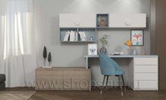 Мебель для рабочего места школьника Вид 20