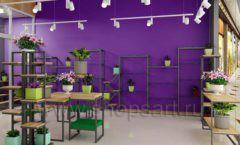 Дизайн интерьера магазина цветов торговое оборудование БУКЕТ Дизайн 27